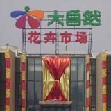 北京大自然花卉市场