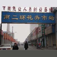 西安朱雀花卉市场