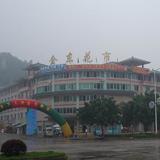 广西省柳州金东花卉市场