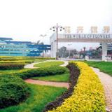 陈村花卉世界