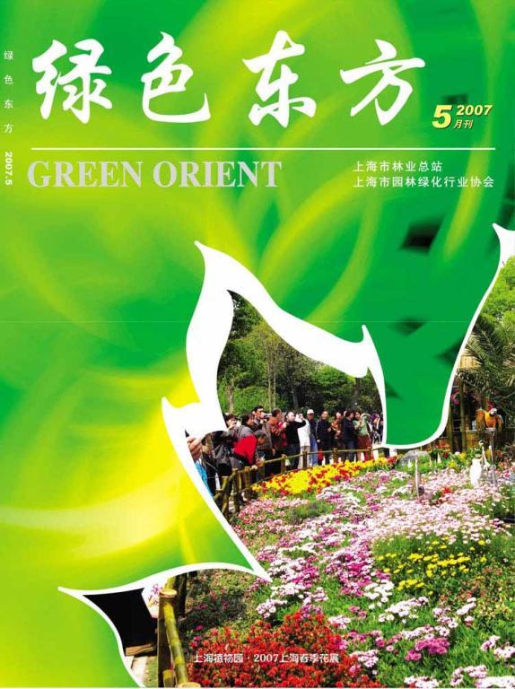 《绿色东方》