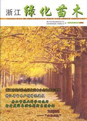 《浙江绿化苗木》