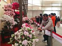 浙江省第二届杜鹃文化节开幕 精品杜鹃盆景同台媲美