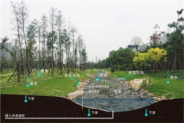 """设计作品 城市公共绿地景观设计 >> 正文  以雨水收集为例,采用""""景观"""