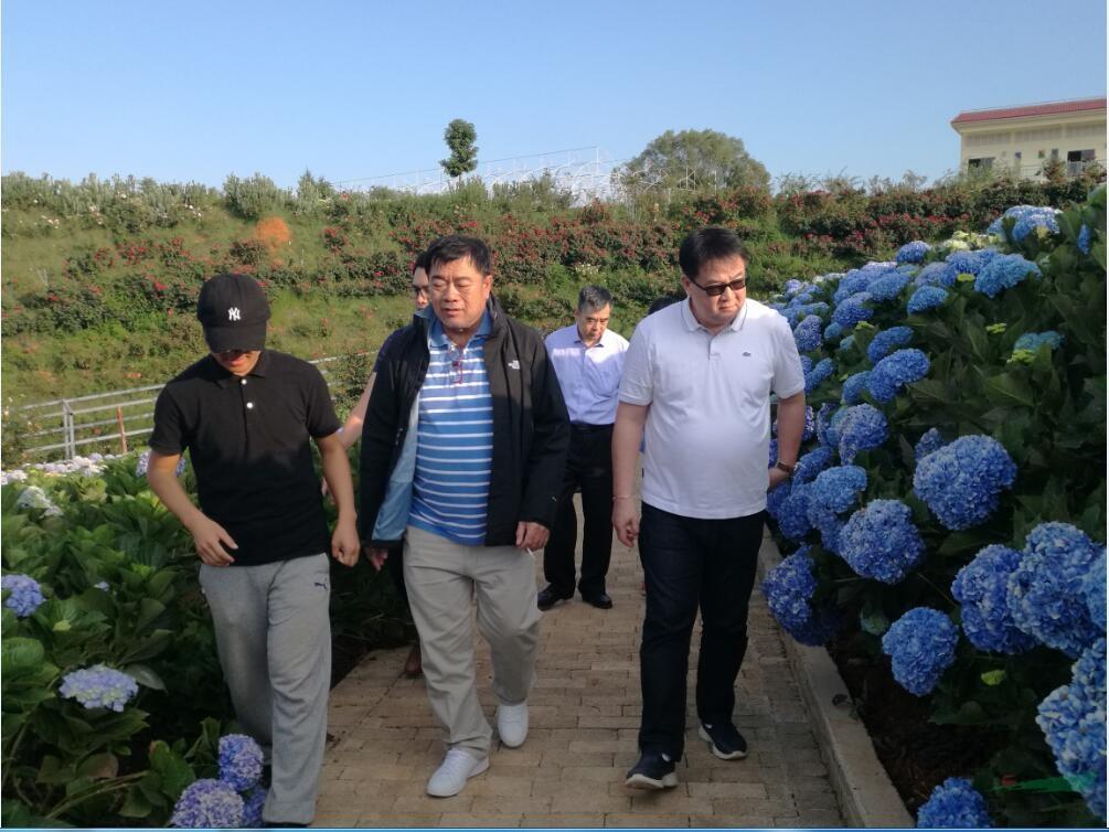 老挝金融经济界高官参观云花基地