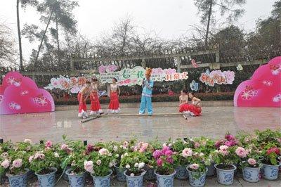 重庆:花团锦簇 南山植物园推出110天赏花大餐