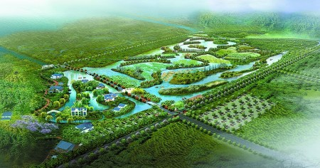 广东:淇澳红树林湿地公园明年动工 打造国家级湿地公园