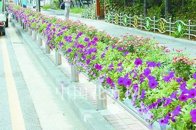 新型立体鞍式绿化花箱面世(图)图片