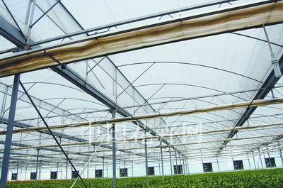 半拱型塑料温室