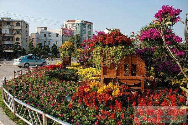 漳州:风谷机变身花盆 打造趣味园林小品