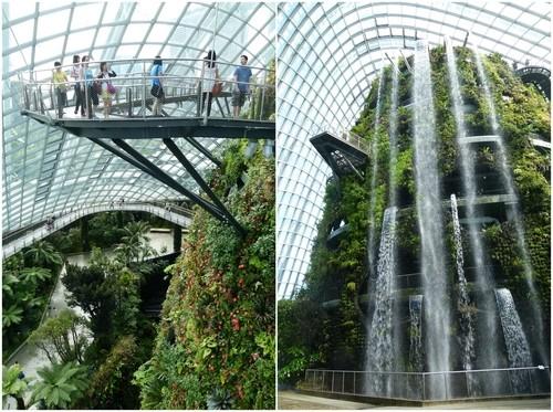 云雾动态_新加坡滨海湾花园观后感- 园林资讯 - 园林网