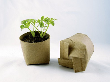 for Recycling toilet paper tubes