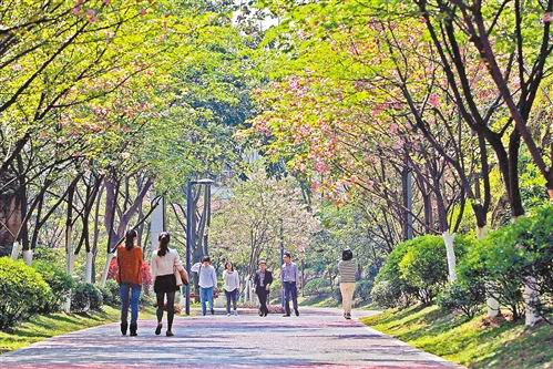 重庆/中国园林网4月10日消息:近日,许多市民在北部新区百林公园...