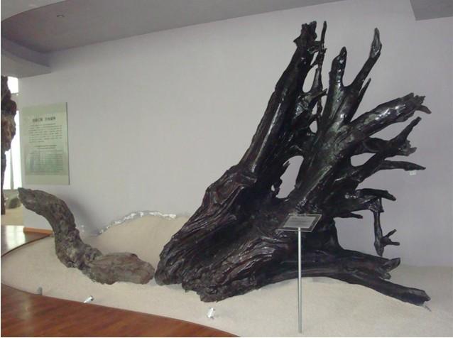 乌木雕塑展示-中国园林网