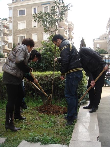 温州:植树节里齐动员 美化社区绿家