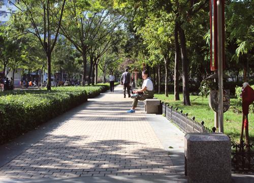 春秋广场植物种类繁多