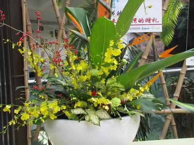 2012京台两地(奥恩杯)台湾文心兰花艺设计大赛