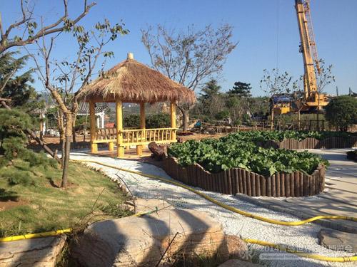 山东:青岛世园会胶州展园初现靓丽风采