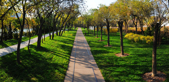 园林滨水步道手绘