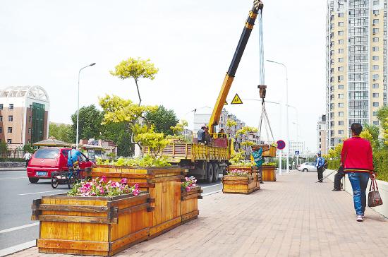 哈市欧式立体景观花箱为街路绿化提档升级