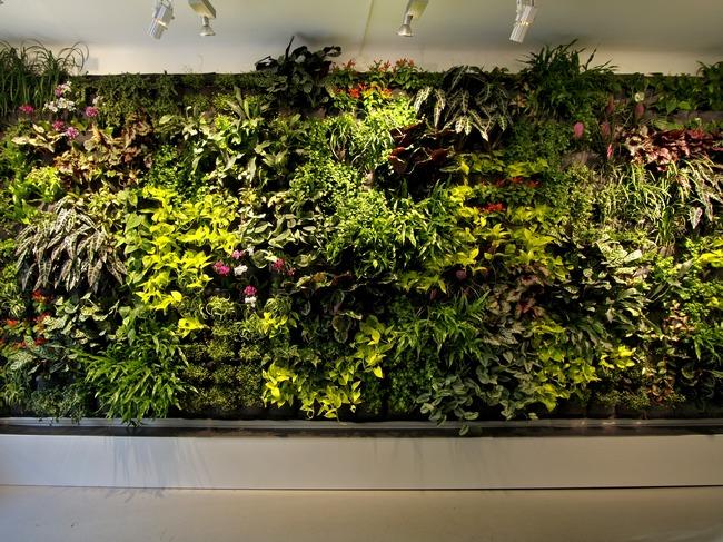 创意 春色/【案例欣赏】春色满屋的办公室绿化