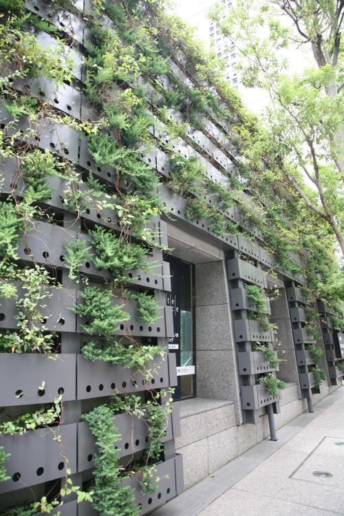 日本东京三井住友大厦屋顶花园