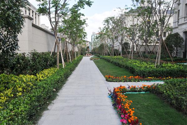 慈溪·绿城玫瑰园-设计交流-景观设计-园林人论坛