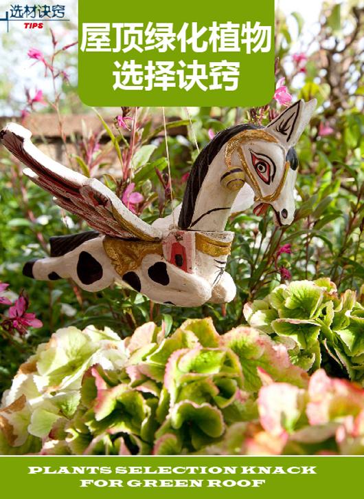 屋顶绿化植物选择诀窍