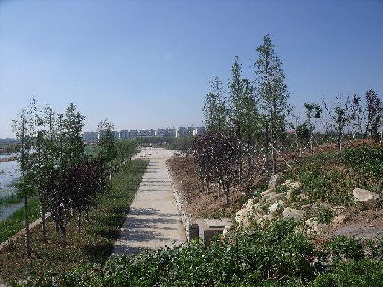 山东:青岛莱西打造绿城水乡 洙河将添九大景观带