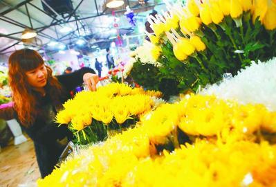 济南某鲜花批发市场,一家花店的店主在整理从南方运来的菊花。