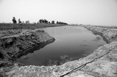 天津七里海湿地苇田被挖土破坏 村民维权被刑