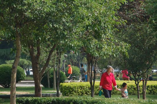 石家庄:街旁游园绿地建设成效明显 为省会添绿
