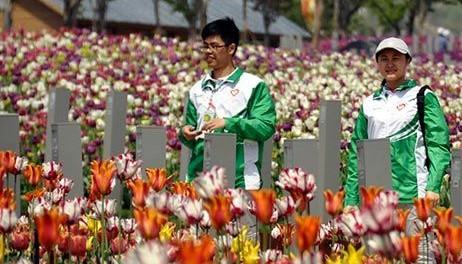 青岛世园会园区内鲜花绽放