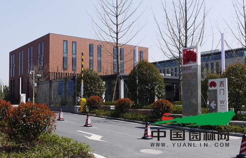杭州二期生产基地景观绿化分包工程一标段 高清图片
