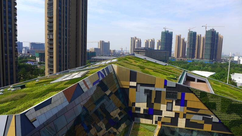 风景园林工程评选推荐:南京万荣立体绿化工程有限
