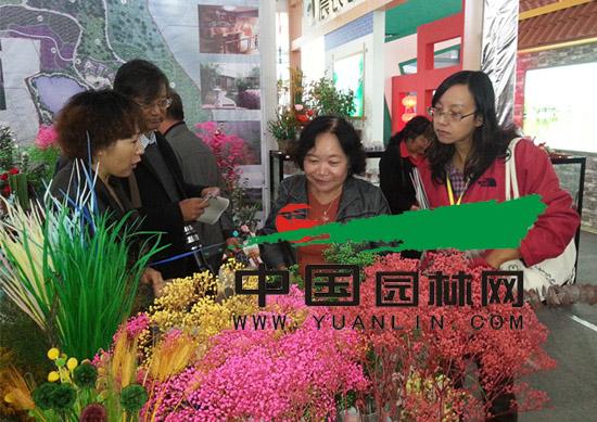 昆明斗南花卉市场向多样化方向振翅高飞