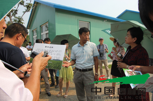 全国苗乡行考察团走进潍坊金丝达集团园林绿化公司