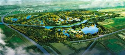 北京:通州森林覆盖率年内超三成