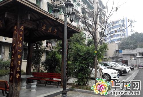 重庆铜梁:打造四季鲜花盛开的园林城市