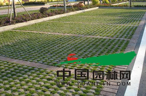 生态停车位:公共绿地与停车位的较量