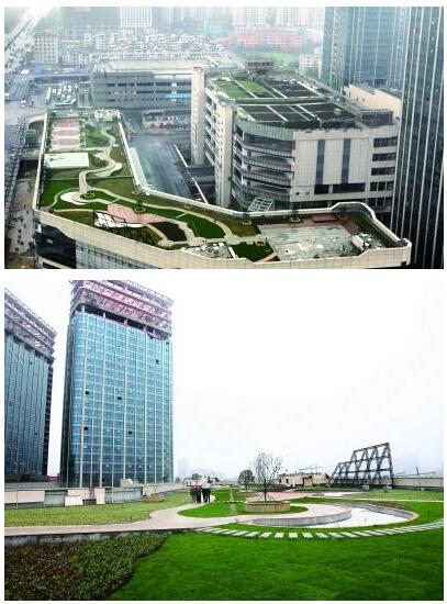 3月20日,长沙河西交通枢纽换乘大楼的楼顶俨然成了一个绿色花园.