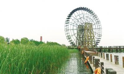 位于吴中区的苏州太湖湖滨国家湿地公园.闫海超 摄