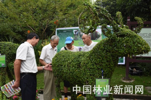 浙江:举办花卉园艺进社区活动