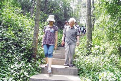 昆明:海口林场乔木6026.1公顷尽显生态本色