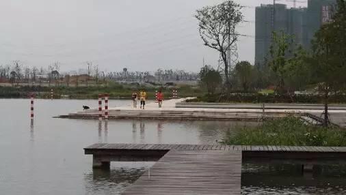 绍兴袍江 两湖 公园初露雏形 预计10月1日开放图片 19674 506x286
