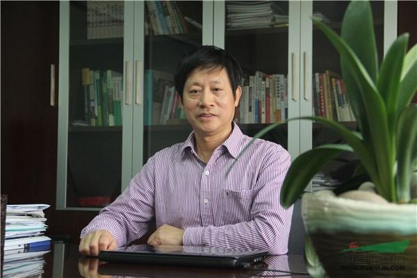 中国大数据市场细分结构