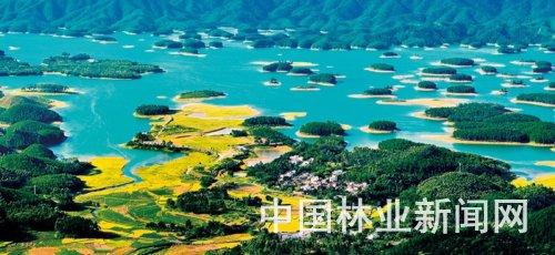 广东江门:建设公园城市 探索创森新路
