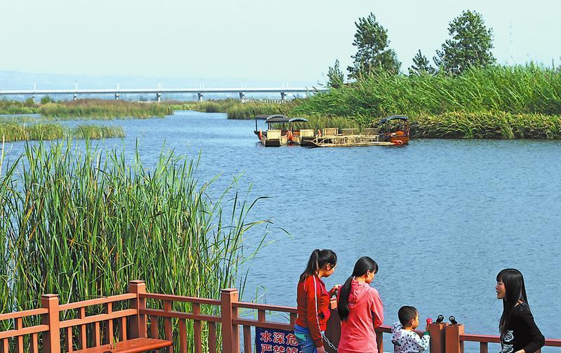 涵养水源削减雾霾 5年沿渭河建设512公里生态区