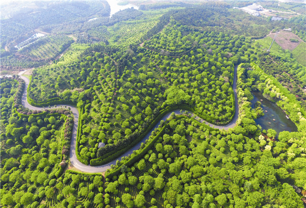 常州创建国家森林城市 全面践行生态文明理念