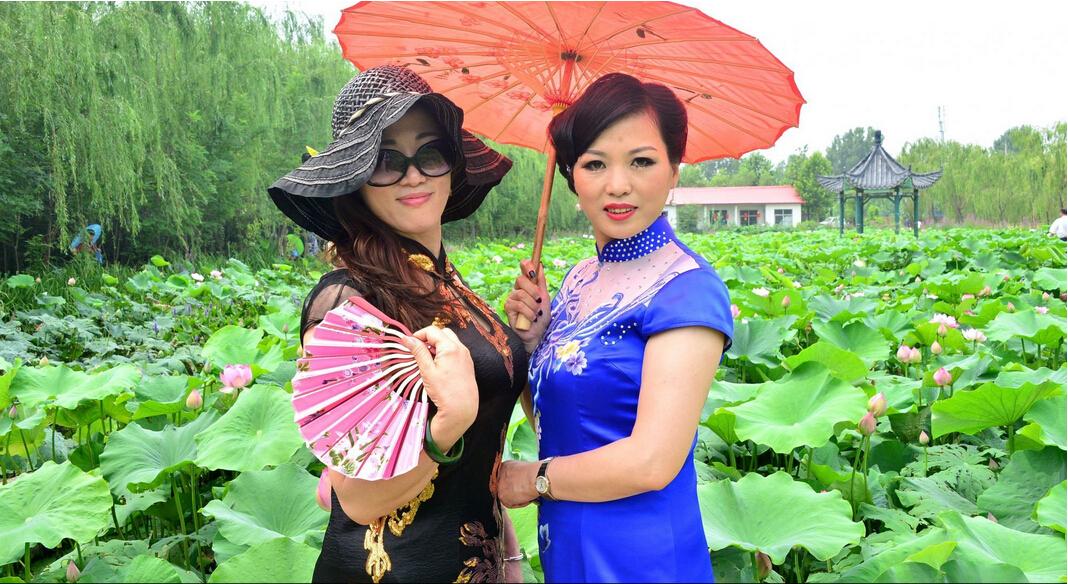 聊城:荷花文化艺术节开幕 旗袍佳丽走秀赏荷- 园林